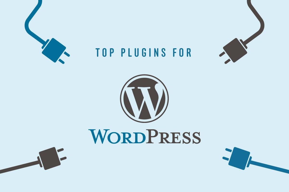 top wordpress plugins web development