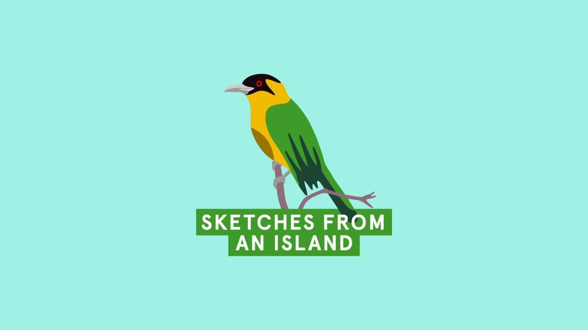 Sketches From An Island logo